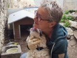 Brigitte von APAL Finikas im Einsatz bei den Kettenhunden